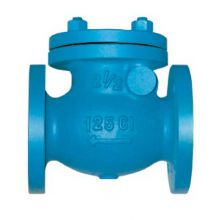 "DN80 (3"") Cast Iron Swing Check Valve Flanged PN16"
