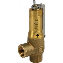 "2"" BSPP Fig 642 Safety Valve Pre-Set To 12.5 Bar"