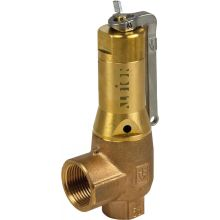 "3/4"" BSPP Fig 645 Safety Valve Pre-Set To 15.5 Bar"