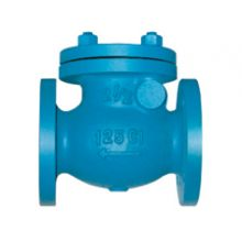 "DN150 (6"") Cast Iron Swing Check Valve Flanged PN16"