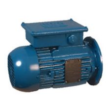 Flange Mounted Motor 2.2KW 3000rpm 2pole 400V Star (460V)