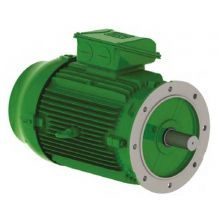Flange Mounted Motor 0.75KW 3000rpm 2pole 400V Star (460V)
